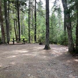 Campsite # 68 in Cobscook State Park is atypical for the park--- a very good site nicely leveled