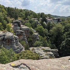 Observation Trail