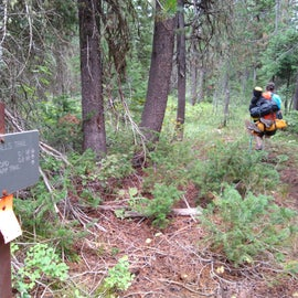 junction on main trail for campsite trail