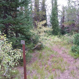 trail from hanging pole to tent area