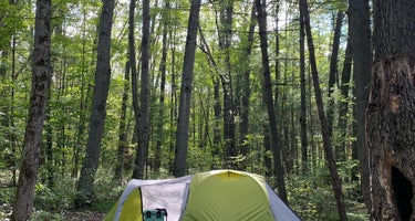 Long Lake (Wexford) State Forest Campground