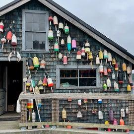 Bass Harbor lobster buoys