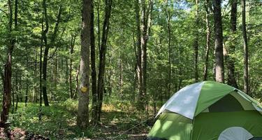 Deer Run Campgrounds