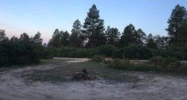 Madden Peak Road Dispersed Camping