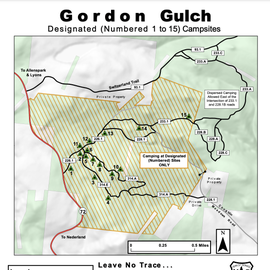 Five miles north of Nederland, National Forest System Road (NFSR) 226, commonly known as Gordon Gulch, turns east off of Colorado Highway 72. NFSR 226 intersects other forest roads: NFSR 314, 228, 233 and their off-shoots. There are 15 numbered, designated campsites scattered along the road system within 1.5 miles east of Highway 72. Camping is permitted in designated sites only. https://www.fs.usda.gov/recarea/arp/recarea/?recid=28272