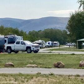 Birch Campground View