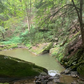 deep swimming hole for the pups