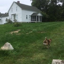 Robert Frost's summer house