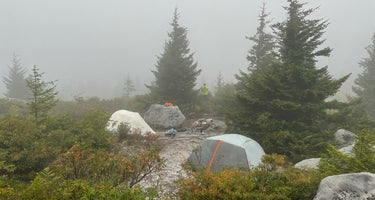 Dolly Sods Backcountry
