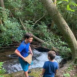 Top of waterfall. Follow the secret steps!