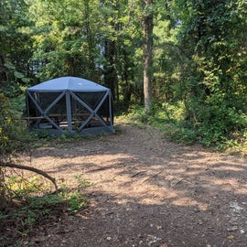 we had our 13' x 9' insect canopy and a 6 person sized tent here