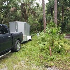 Bushes divide campsites