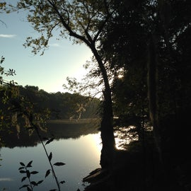 Suwanee River sunrise