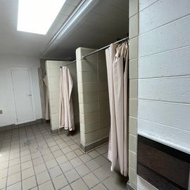 bathhouse - bugs around