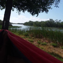 My view from said hammock. Just love it.