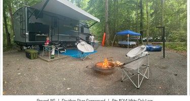 Pisgah National Forest Davidson River Campground