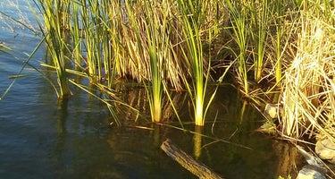 Lake Afton Park