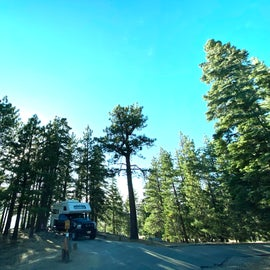 Campsites with lots of trees and beautiful views