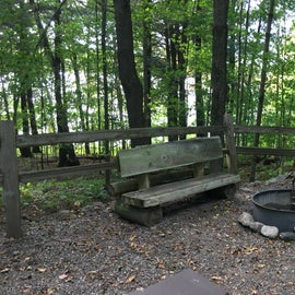 Interesting benches made by the Wisconsin Conservation Corps. Many are decayed.
