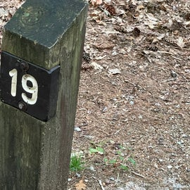 Campsite marker- site 19 is close to water
