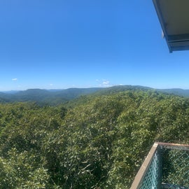 Panorama of the view from the tower.