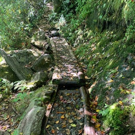 Some of the paths up on the Appalachian Trail have ingenious (if tricky) paths, like this one cut to allow water to flow down the mountain.