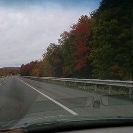 Wonderful fall leaf colors