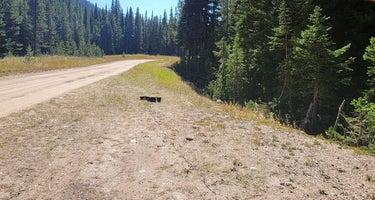 The Lost Site - Dispersed Campsite