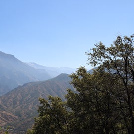 Pretty amazing views of Kings Canyon