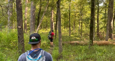 Davy Crockett National Forest Ratcliff Lake Recreation Area