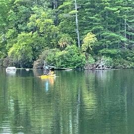 Kayaking is popular here at Pawtuckaway