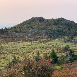 Wilburn Ridge is one of five 5000 footers you can hike to...