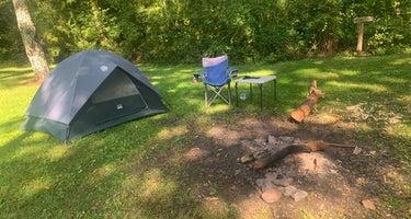 Davis Pond Campsite