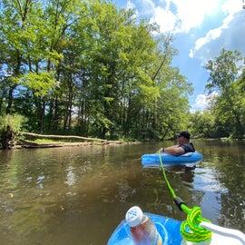 floating in stream behind site