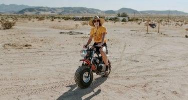 Van Life & Nomad Campground
