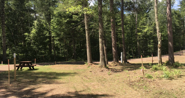 Sumter National Forest Woods Ferry Campground