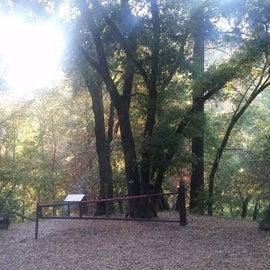 Trailhead to Uvas Creek Trail.  Steep incline upon return.