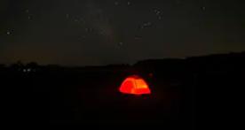 Blackwater Snakehead Campsite