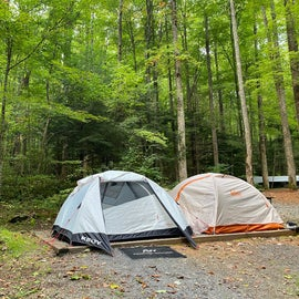 2-3 person tents on tent pad