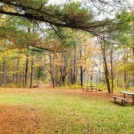 picnic area along St. Louis River
