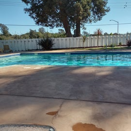 salt water heated pool 80 degrees