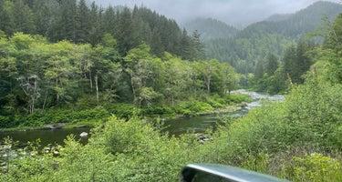 Tillamook Forest Dispersed Camping on the Nehalem River