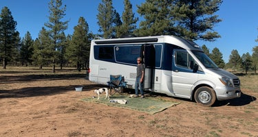 Garland Prairie Rd Dispersed Camping, AZ