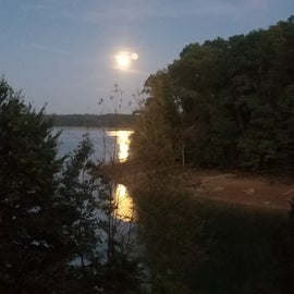 moonlight from our site