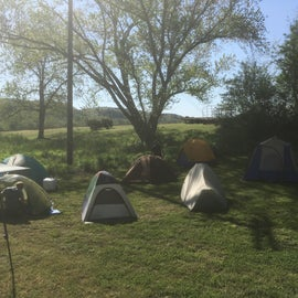 Cluster of tents on the east side of the campground.