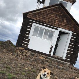 The exterior of the lookout, and our adorable dog.