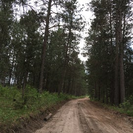 County forest road into Bear Den landing