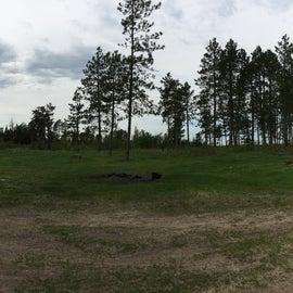 Campsite is now pretty barren of trees