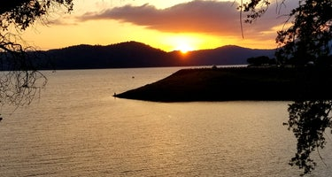 Chamise - Tuttletown Area - New Melones Lake