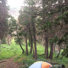 Campsite to the left of Medano Lake